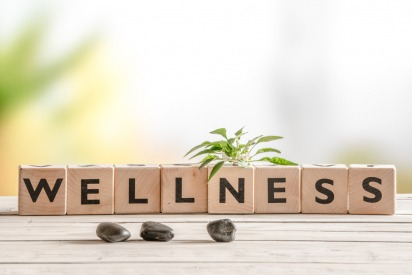 directory wellness