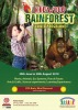 Rainforest Summer Programme at Redwood Montessori Nursery Palm Branch
